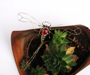 Tiski cvet veći- crvena